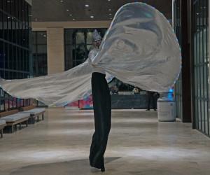 Mariposas Led & Zanqueros - BPC Shows Y Eventos Cancún